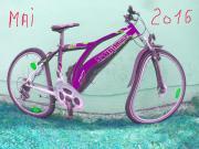 Alt Fahrräder Sammlung -