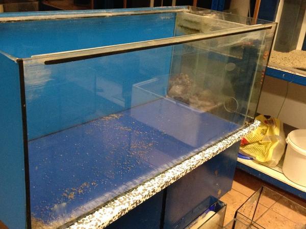aquarium fische zubeh r kaufen bei deine. Black Bedroom Furniture Sets. Home Design Ideas