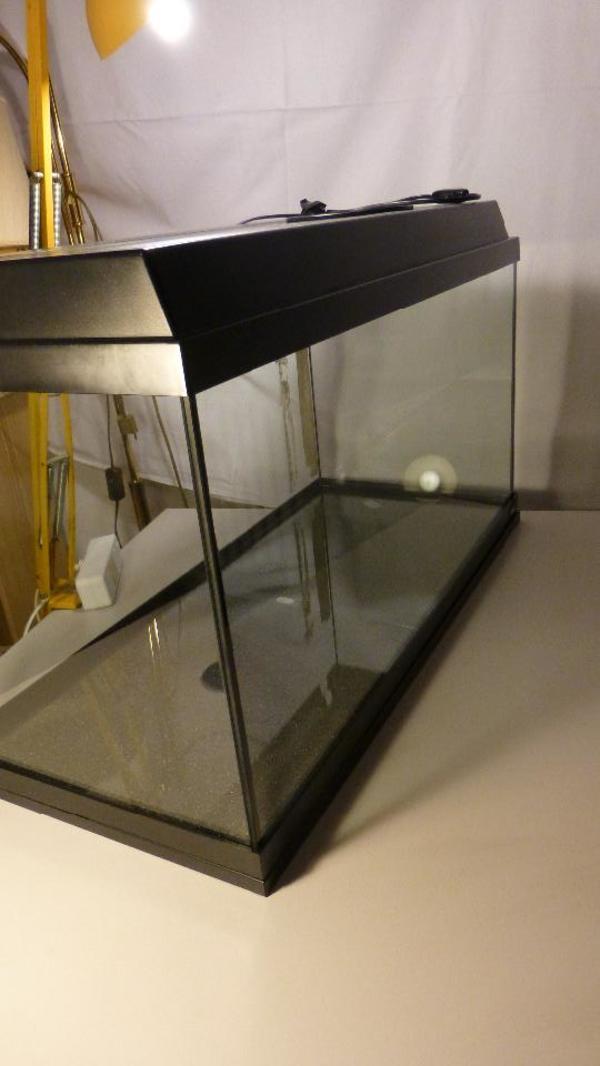 gebrauchter kleinanzeigen tiermarkt deine. Black Bedroom Furniture Sets. Home Design Ideas