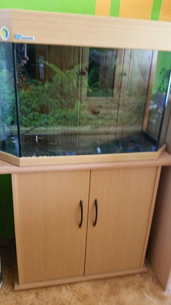 aquarium mit unterschrank in filderstadt fische aquaristik kaufen und verkaufen ber private. Black Bedroom Furniture Sets. Home Design Ideas
