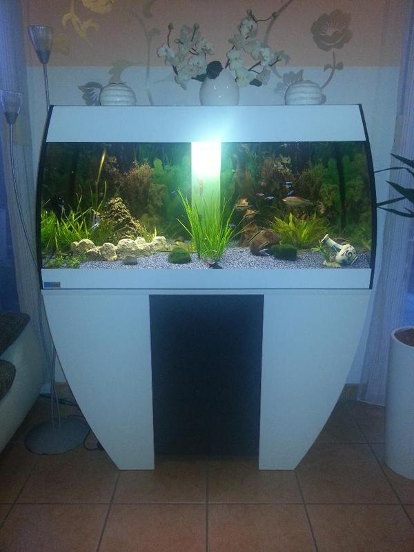 aquarium mp eheim scubabay 270 l wei anthrazit in neuenhagen fische aquaristik kaufen und. Black Bedroom Furniture Sets. Home Design Ideas