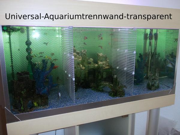 aquarium universal trennwand f r aquarien fische kampffische jungfische aquarium zubeh r in. Black Bedroom Furniture Sets. Home Design Ideas