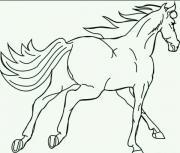 Auto gegen Pferd
