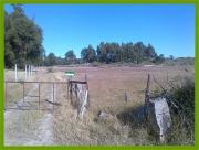 Bauernhof mit Haus