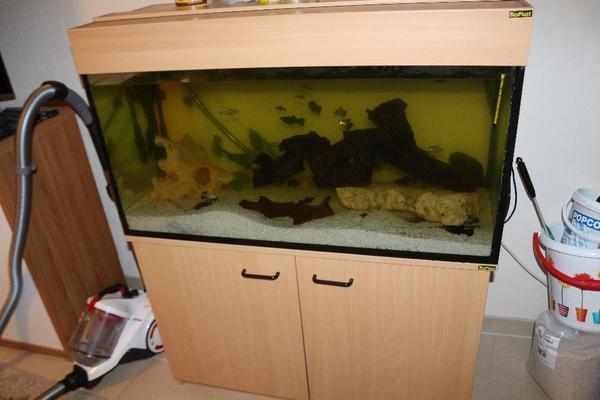 aquarium pumpe kaufen gebraucht und g nstig. Black Bedroom Furniture Sets. Home Design Ideas