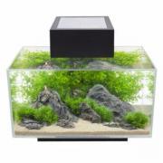 Design- Aquarium Fluval