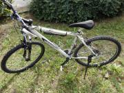 Fahrrad Firebird GTX