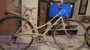 Fahrrad Pegasus Rubin