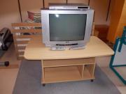 Farb-TV 55cm