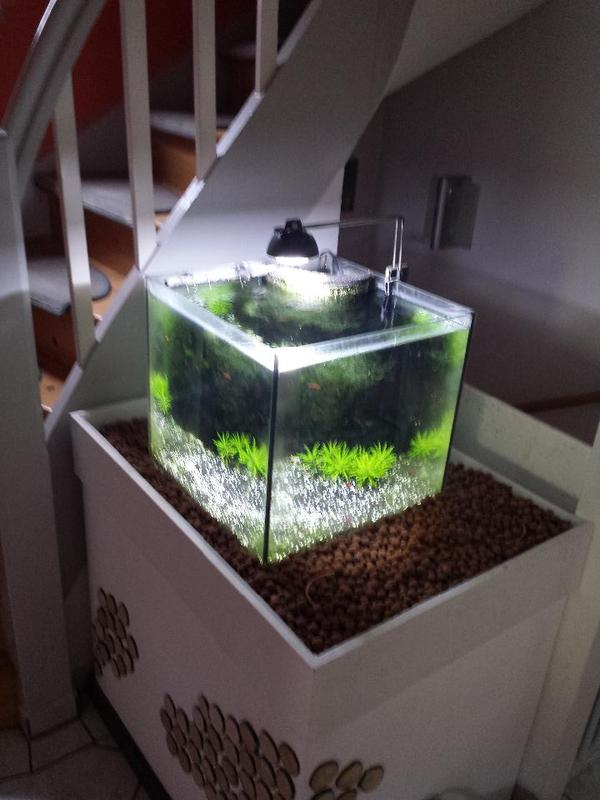 aquarium unterbau neu und gebraucht kaufen bei. Black Bedroom Furniture Sets. Home Design Ideas