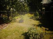 Garten ca. 600qm
