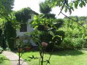 Garten und Bambusoase