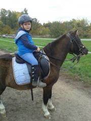 Gefahrenes Pass Pony