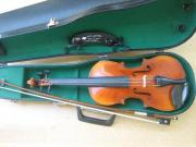 Geige Violine