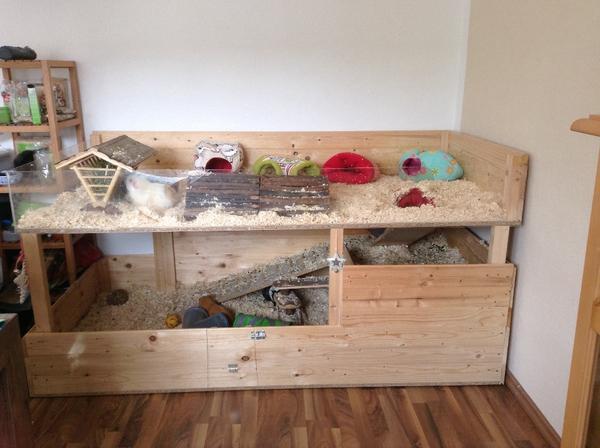 gro er meerschweinchen eigenbau 4 5qm in langenhagen. Black Bedroom Furniture Sets. Home Design Ideas
