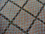 Großes Netz