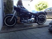 Harley Davidson Fat
