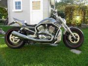 Harley Davidson V-