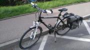 Herren Fahrrad Pegasus