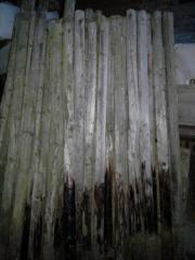 Holzpfähle für Weide