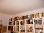 Hunderte Bücher,verschiedene.