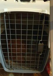 Hundetransportbox Größe L