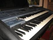 Keyboarder sucht