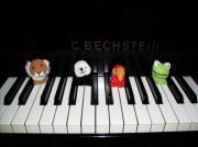 Klavierlehrer-in Klavier