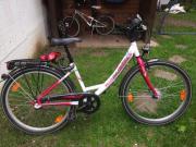 Mädchen Fahrrad Pegasus