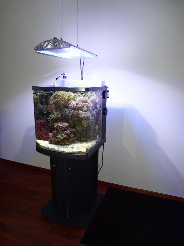 meerwasser aquarium komplettsystem 130l komplett mit. Black Bedroom Furniture Sets. Home Design Ideas