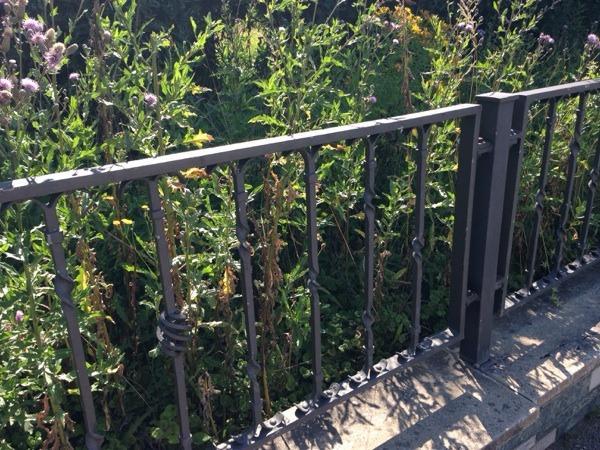 Gartenzaun holz gebraucht in koln for Garten q gebraucht