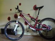 Mountainbike Carbon