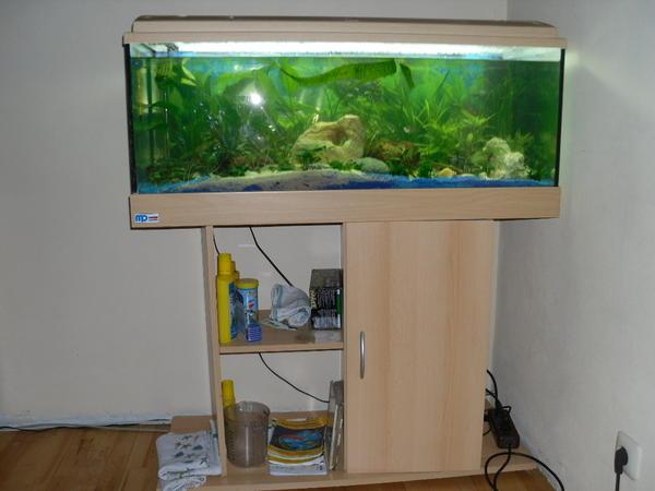 mp aquarium 100m 40cm 40cm 160 ltr in gro umstadt fische aquaristik kaufen und verkaufen. Black Bedroom Furniture Sets. Home Design Ideas
