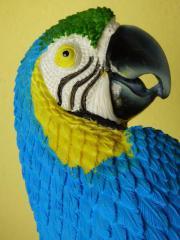 Neue Papagei Deko