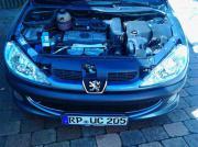 Peugeot 206/einparkhilfe,