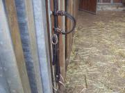 Pferde, Zubehör Westernkopfstück