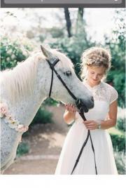 Pferdemist zu verschenken