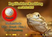 Plakate zu Reptilien