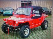 Quadrix Buggy 800