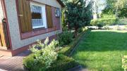 Sehr gepflegter Kleingarten