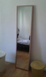 Spiegel 160x40