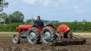 suche traktoren und