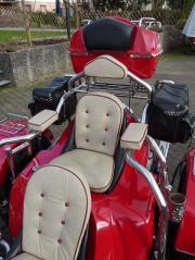 Trike REWACO HS