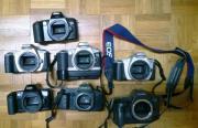 verschiedene analog Canon
