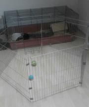 Verschiedene Käfige