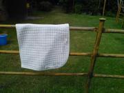 weiße Dressurschabracke