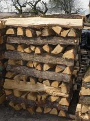 1 Raummeter Brennholz