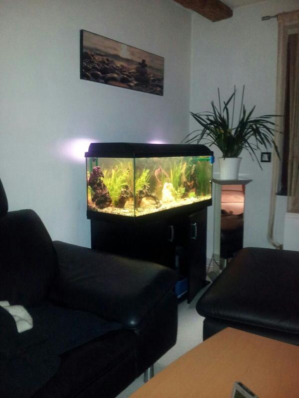 aquaristik in bretten baden kaufen bei deinetierwelt. Black Bedroom Furniture Sets. Home Design Ideas