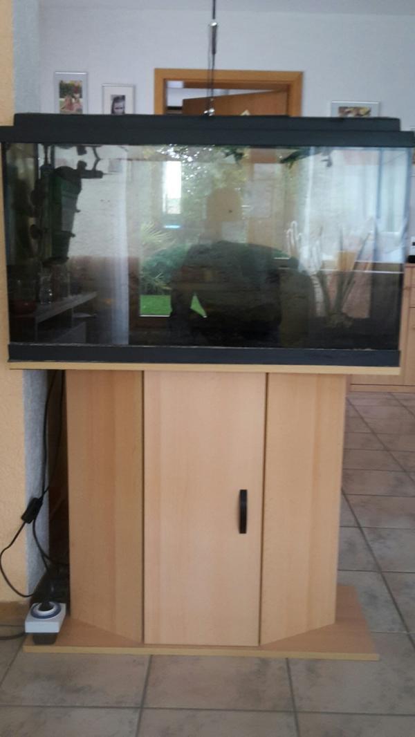 aquarium 120l kleinanzeigen kaufen verkaufen bei deinetierwelt. Black Bedroom Furniture Sets. Home Design Ideas