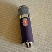 BeezNeez Arabella Röhrenmikrofon